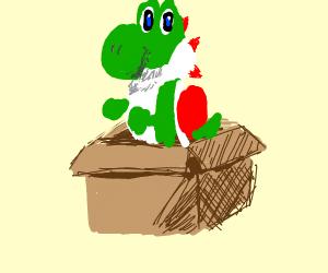 yoshi in a box