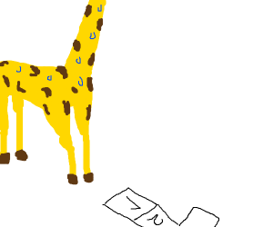 Giraffe playing hopscotch nervously