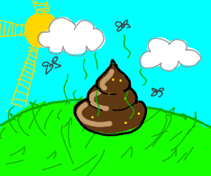 poop on a partly cloudy day