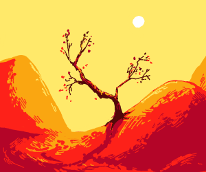 Tree in desert mountains