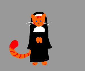 Cat nun