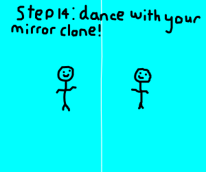 Step 13: Enter the mirror dimension