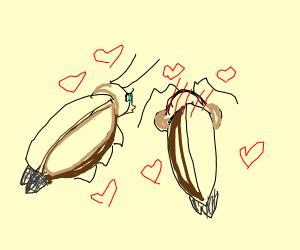 2 beetles in love