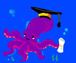 Octopus graduates