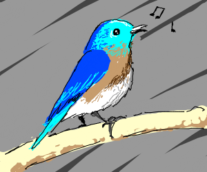 Blue cute bird singing on a tree branch