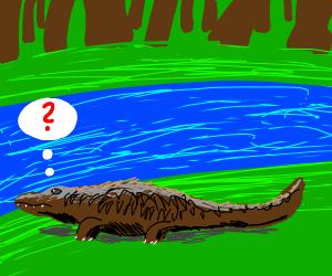 an alligator contemplating life