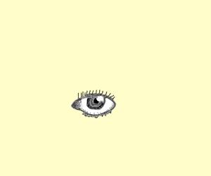 A realistic eye