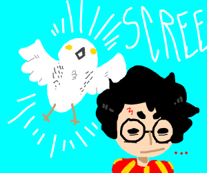 Hedwig is annoying Harry