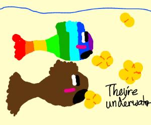 rainbowfish&brownfish have popcorn undewater