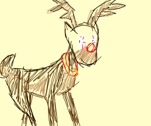 Rudolph stares into your soul