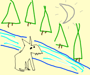 Wolf next to a river
