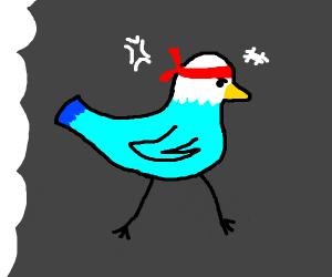 Pigeon with a bandana
