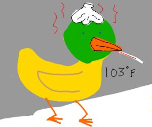 A Sick Duck
