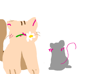 Kitten presents daisy to mouse