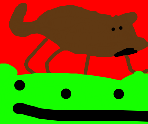 a dog on a frog