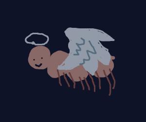 mantis shrimp is god