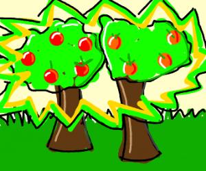 Radioactive Fruit Trees
