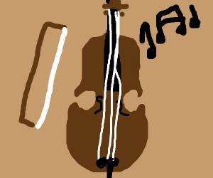 either a violen/cello/bass