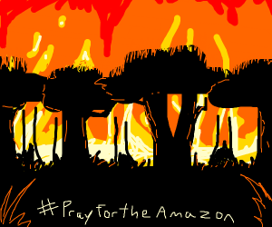 #pray for the amazon H