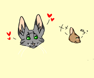 Cat in love with uninterested squirrel