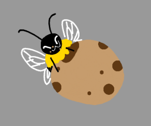Bee eating a cookie
