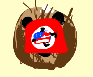 american flag in the nazi flag in a coconut