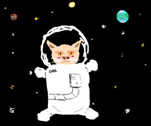 Grand Space Cat