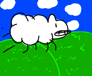 Floating sheep