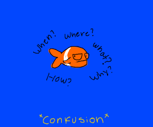 Fish are confused
