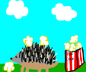 A hedgehog with popcorn stuck in its prickles