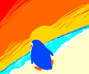 Penguin sit on beach and look at sunset