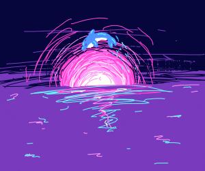 A gorgous sunset over an ocean + dolphin