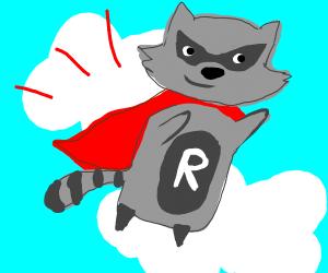 flying racoon