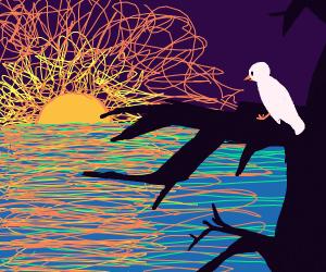 Bird on branch looks at sunset over sea