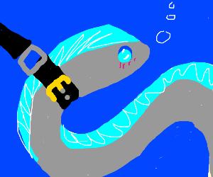 Pet Eel