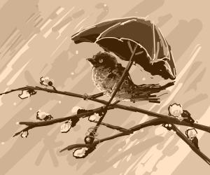 One lil birdy under an umbrella