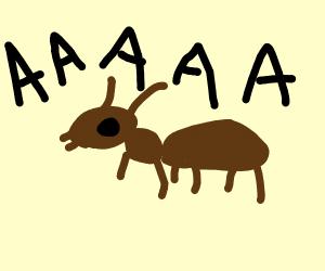 """ant says """"AHHHHHH!"""""""