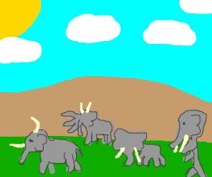 a herd of deformed elephants