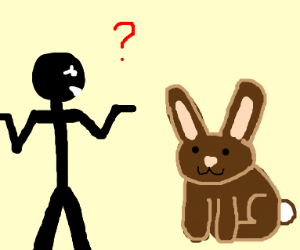 Man confused about rabbit