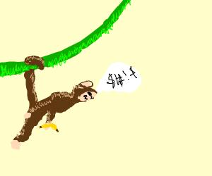 A monkey talking gibberish