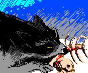 Wolf eating human bones