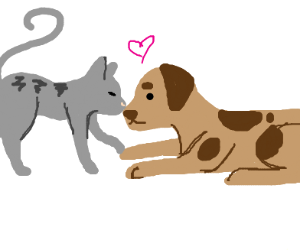 cat and dog in love