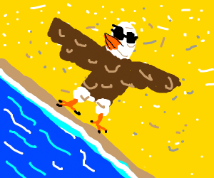 local eagle goes for a swim