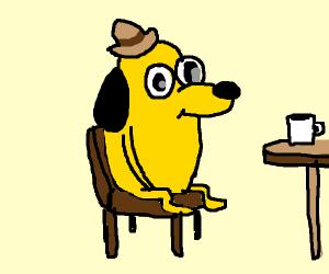 Yellow doggo