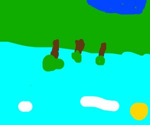 an inverted landscape