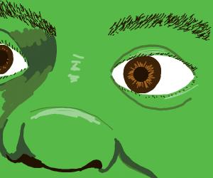 Shrek close-up <3