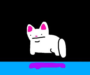 Floating cat