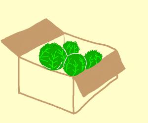 Box full of lettuce