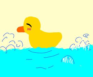 Blushing rubber ducky in bath