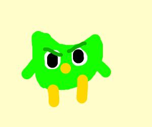the cursed green language owl